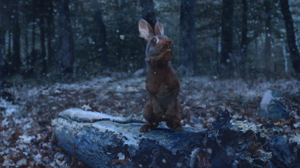 Rendered VFX Rabbit from New York Lottery TV Advert