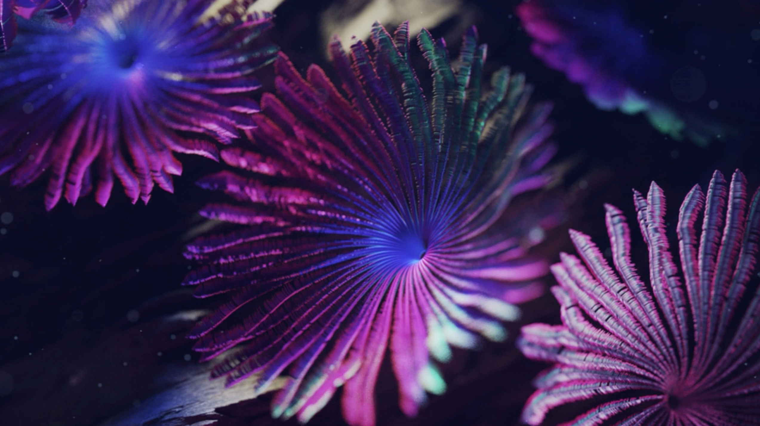 Coral reef coming to life VFX