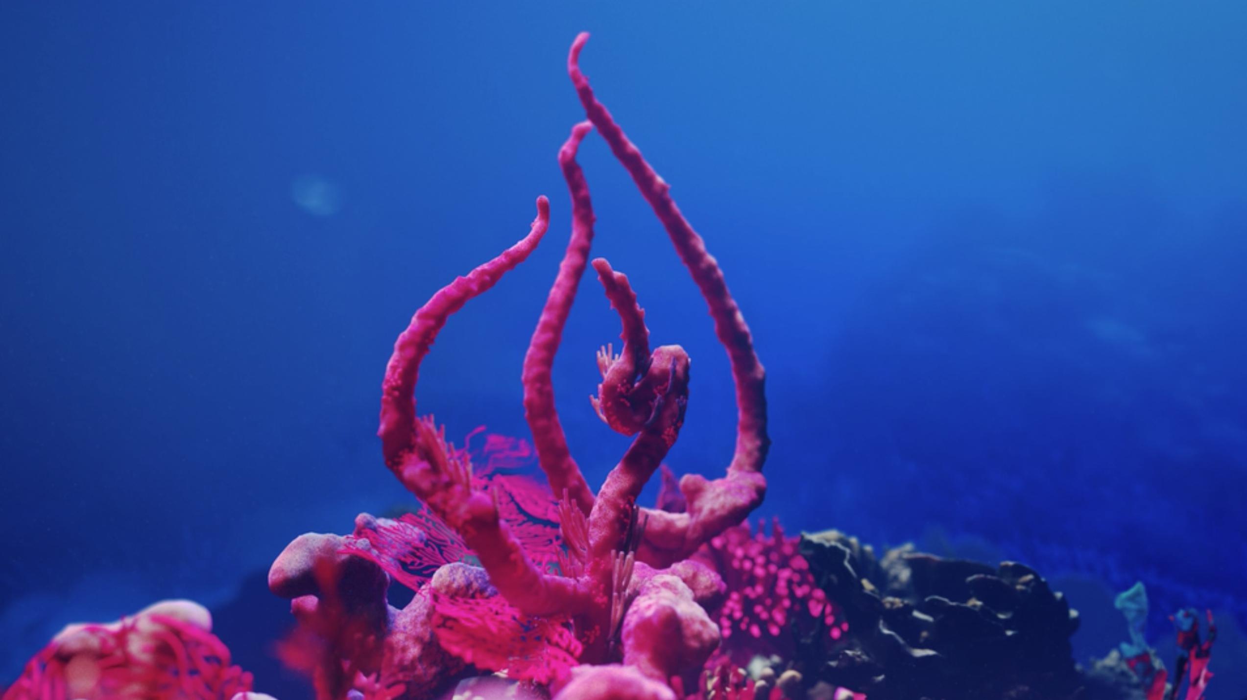 CGI coral reef
